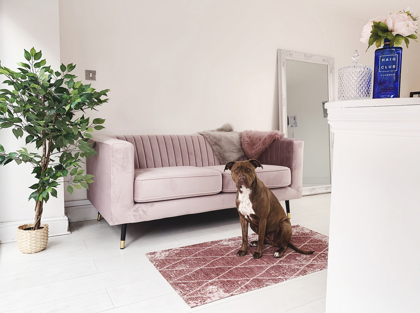 Pink Slender sofa in a spacious living room